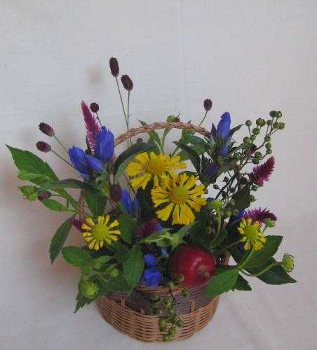 今週のおすすめは「観葉植物」!
